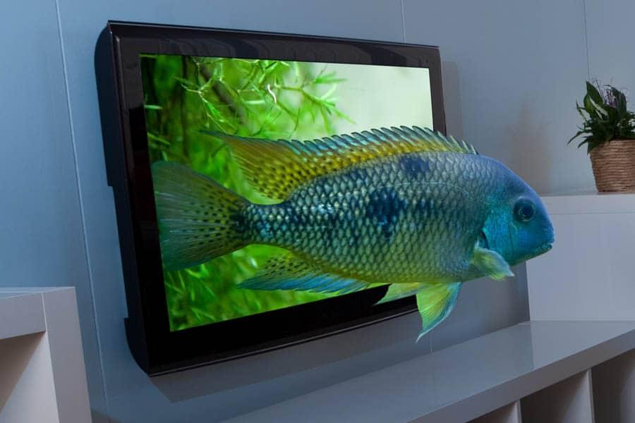3D-TV